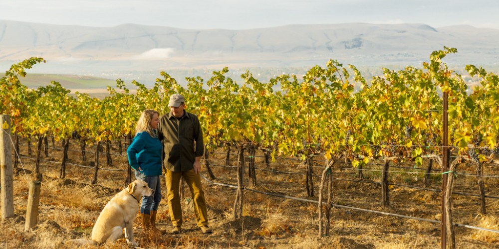 Tim and Kelly Hightower in the vineyard with Riley the Yellow Labrador, talking to each other about balance in their wines.